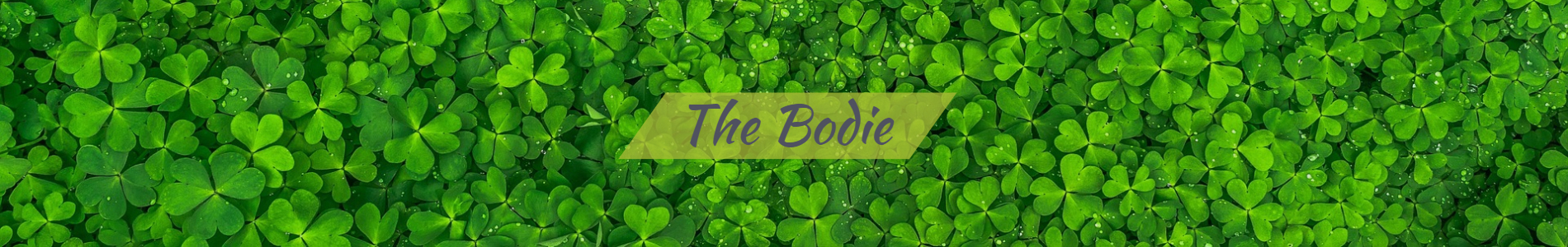 The Bodie - Premium | Real Estate Sales Representative